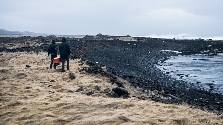 The Iceland Whale Bone Project