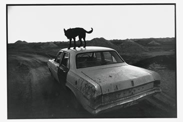 Wim Wenders, Time Capsules. By the side of the road