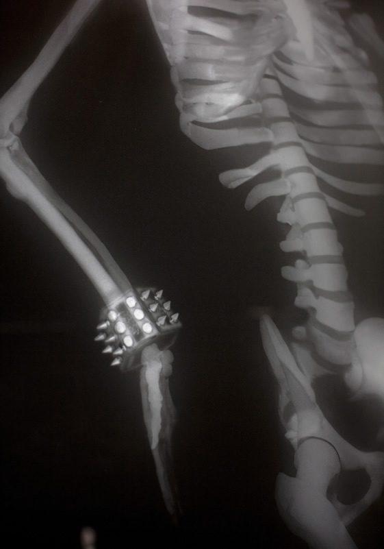 Louboutin's X-Ray Windows