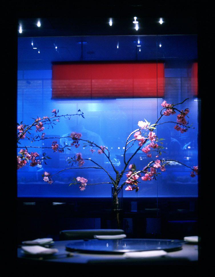 Yauatcha x Harvey Nichols for Chinese New Year
